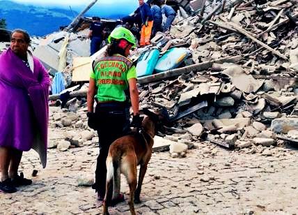 A proposito del terremoto
