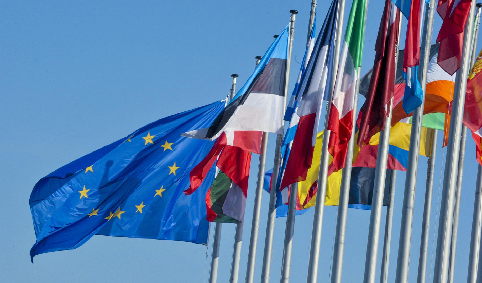 Nel 1966 non c'era l'Unione Europea!