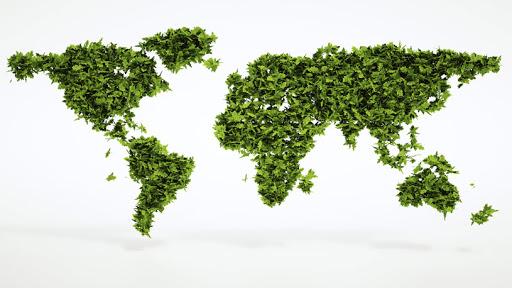 Neutralità carbonica. La scommessa europea è convincere gli altri