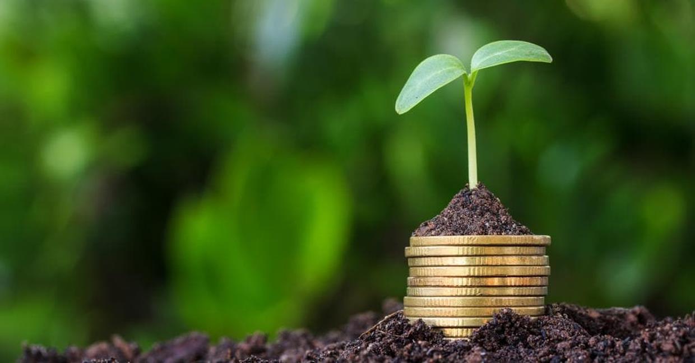 La corsa ai bond verdi e gli sforzi della Commissione contro il greenwashing